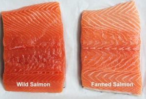 wild-salmon-vs-farmed-keep-Life-Simple-copy